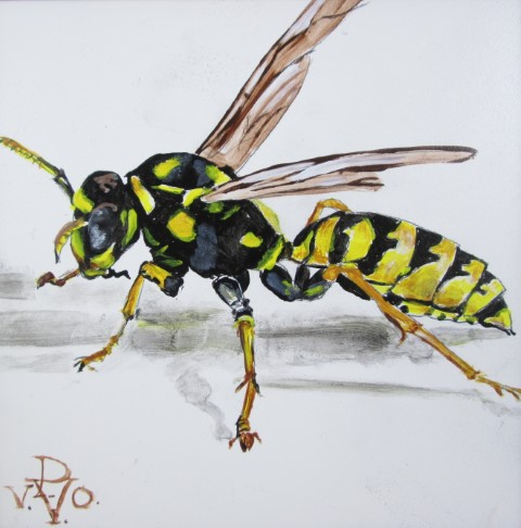Wasp Paula Voris Painting